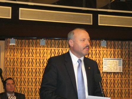 Sesiunea APCE din ianuarie 2011