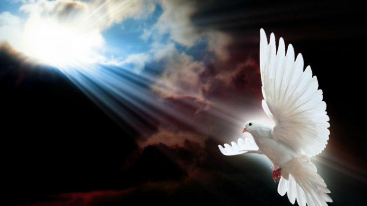 Patru calități ale Duhului Sfânt